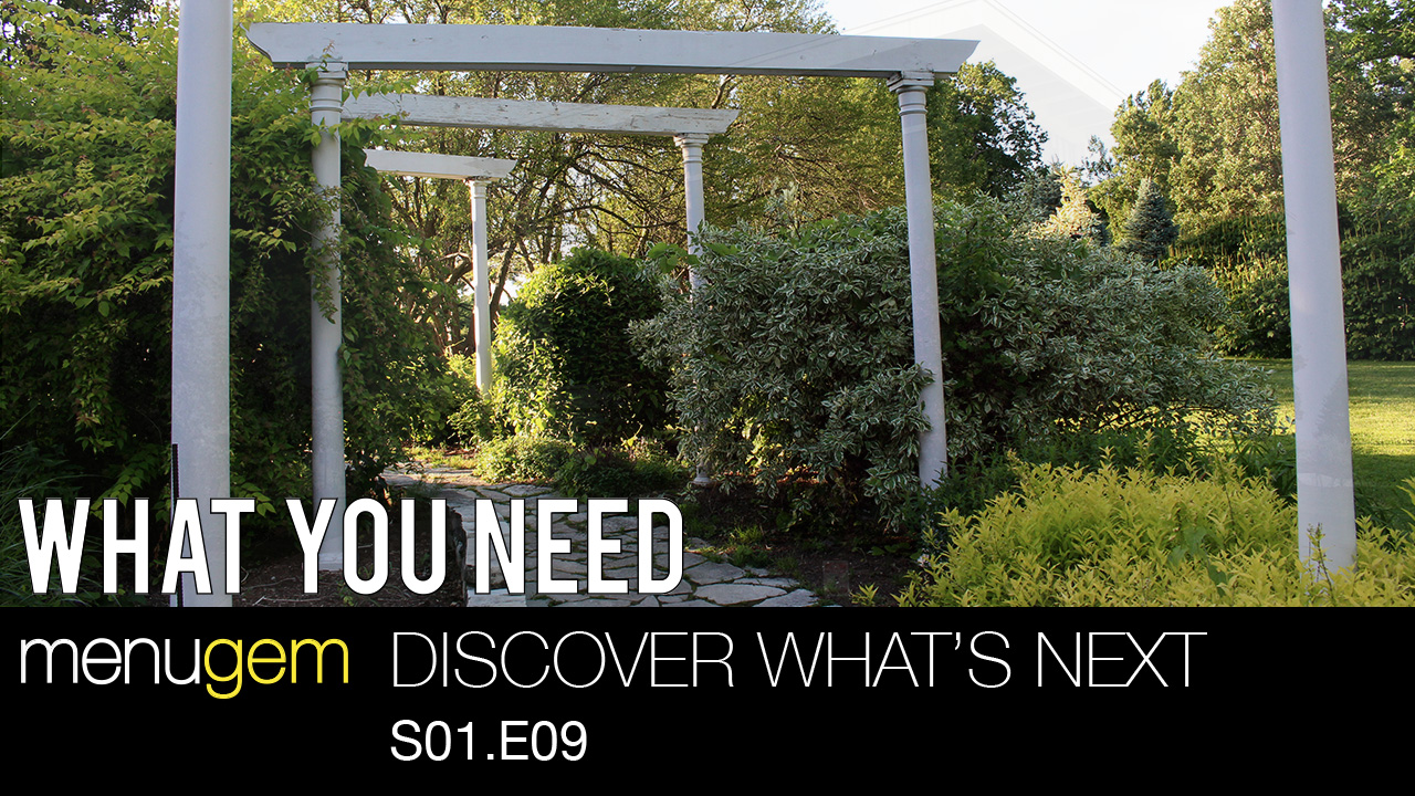 What You Need - Discover What's Next S01.E09